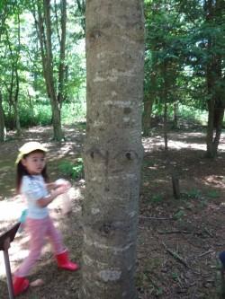 人の顔みたいな木